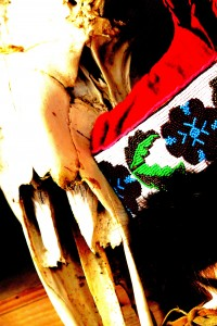 Edited 009 Moose skull with Mukluks