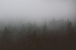 Fog Spooky
